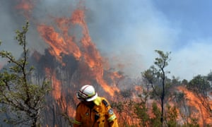 NSW Rural Fire Service and Victorian CFA firefighters put in containment lines on the Darling Causeway, near the township of Bell, in the Blue Mountains.