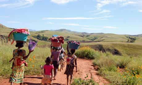 Women and  children walk to the river in the locust infested area in central Madagascar