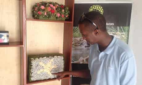 mogadishu flowers