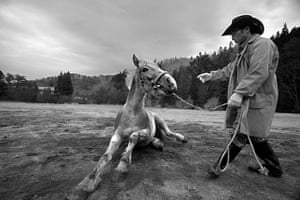 Fukushima horses: Tokue Hosokawa, a 62-year-old horse breeder, on his 100-year-old farm in  I