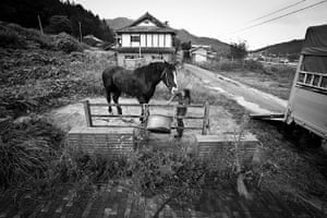 "Fukushima horses: ""There is no future in this village. Only my house lights up in the night."