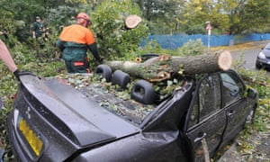A car crushed by a tree, London