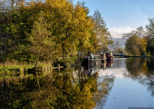 Great Nature Watch: Leeds and Liverpool Canal