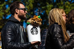 Halloween pets: A dog dressed as a pumpkin spice latte takes part in the 23rd annual Tompkins Square Halloween dog parade in New York