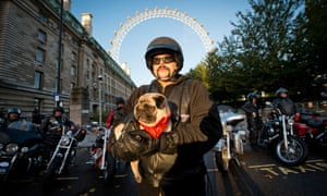 Be more H.O.G! Mabel the pug and biker Gareth Swanson before they set off on Harley Davidson bikes around the UK as part of a partnership with men's health charity, Movember.