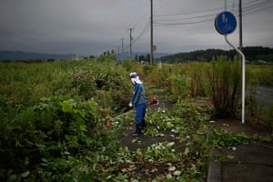 Fukushima: A worker cuts dense, wild vegetation in the evacuated town of Namie