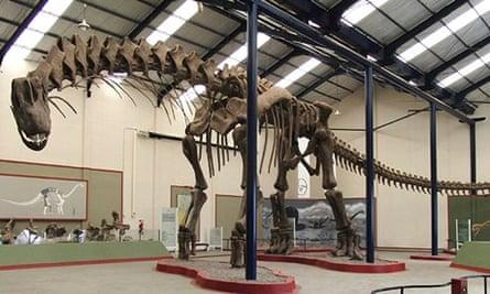 Skeleton of the dinosaur Argentinosaurus