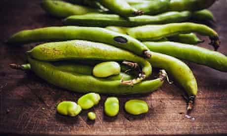 Rohan Anderson broad beans