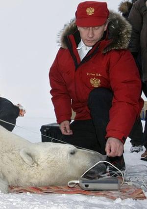Putin and Abbott: Putin measures polar bear