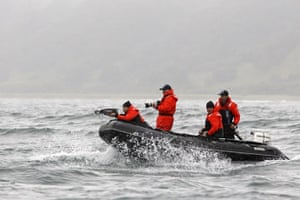 Putin and Abbott: Putin fires a crossbow at a whale