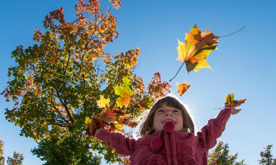 A girl throws many-colored autun leaves into the air in Straubing, Germany, 03 October 2013.