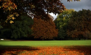 Autumn has arrived as the trees begin to fall in Royal Victoria Park in Bath, UK.