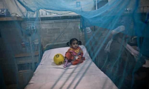 A child suffering from the mosquito-borne disease dengue fever, rests in a bed covered with a net at an isolation ward of a hospital in Rawalpindi, Pakistan.