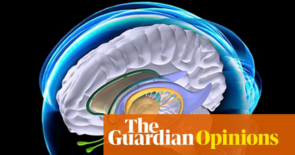 Neglecting Neuroscience Has Criminal >> Can Defendants Really Blame Damage To Their Brains For Criminal Acts