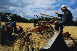 East Anglia - Weekend: Man on combineharvester in field