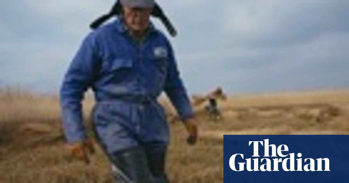 Big sky country: East Anglia's traditional farms – in pictures