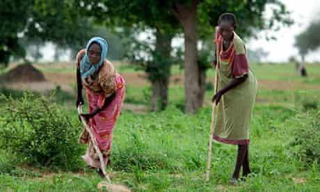African farm Sudan food security