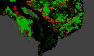 Deforestation in Cambodia and Vietnam