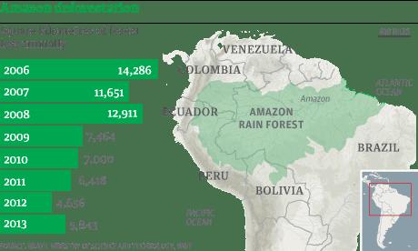 deforestation of the amazon rainforest essay