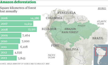 Amazon deforestation increased by one third in past year amazon deforestation increased by one third in past year environment the guardian gumiabroncs Images