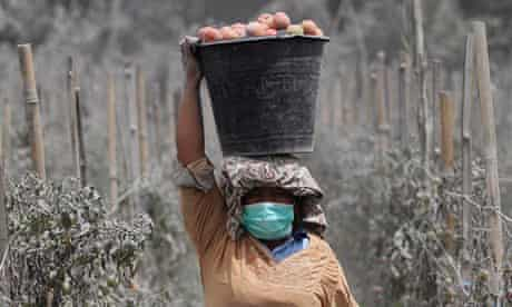 A woman carries a bucket full of ash-covered tomatoes in Mardingding