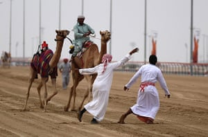 From the agencies camels: Handlers try to control a camel, that decided to run the wrong way, during
