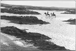 Elliott Erwitt: Horses on beach