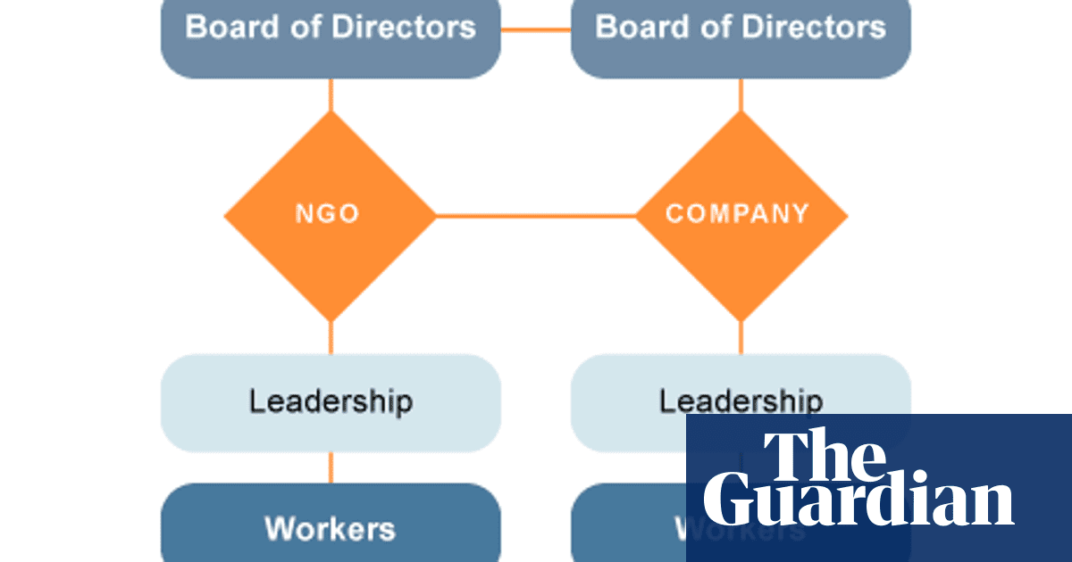 The NGO-business hybrid: more than the sum of its parts