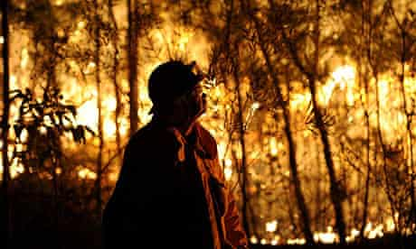 A RFS firefighter assesses a bushfire burning close to homes on Patterson street at Springwood in th