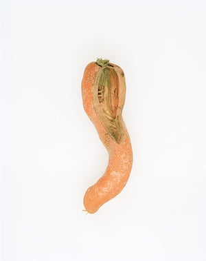 Big Picture - Carrots: orange carrot against white background
