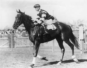 Melbourne Cup memories: Australian race horse Phar Lap