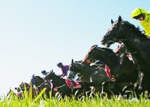 Horses leap from the barrier at the start of a race during Melbourne Cup Day at Flemington Racecourse.