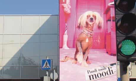 postcard by Jonathan Meades: Liisi dog TV star Estonia