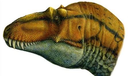Reconstruction of Lythronax skull