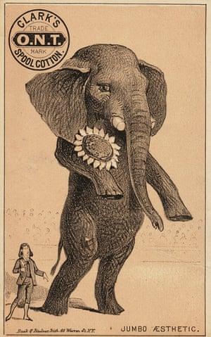 Jumbo and Oscar Wilde.