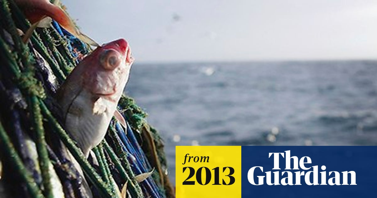 Discards ban 'no great victory' for fish stocks, says expert