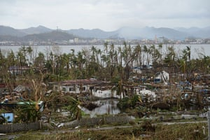 Typhoon Aftermath: Fallen trees and destroyed houses