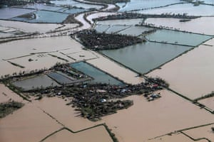 Typhoon Haiyan: An aerial view shows flooded rice fields