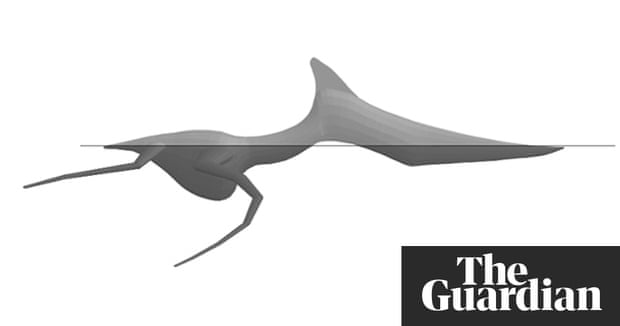 Life On The Ocean Wave Wasnt Easy For Pterosaurs Science The