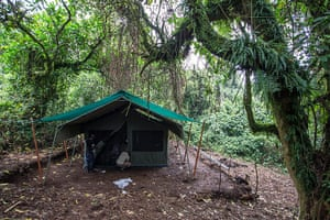 WWF Virunga Campaign: A new camp is being constructed for visitors