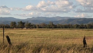 Leard State Forest and surrounding farmlands. Photograph: maulescreek.org