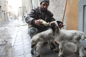 Winter in Syria: A Free Syrian Army fighter feeds a goat in Aleppo