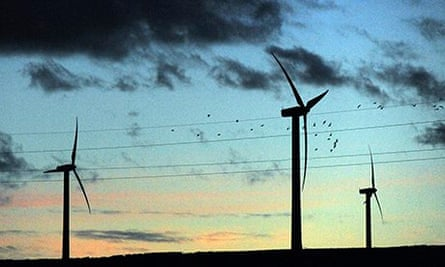 Government urged to cut cash to green energy in order to reduce bills