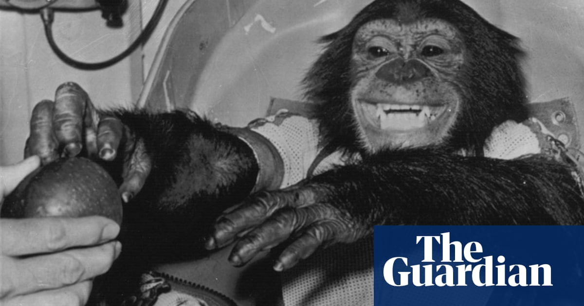 Ham the astrochimp: hero or victim? | Science | The Guardian