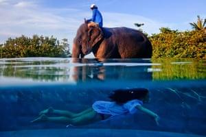 TPOTY: elephant and swimmer, Phuket, Thailand