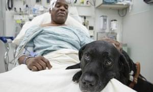Cecil Williams pets his guide dog Orlando