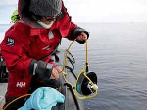 Marine ecologist Tracey Rogers deploys an underwater speaker