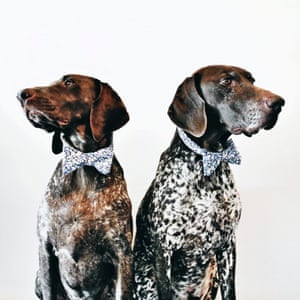 Two pointers