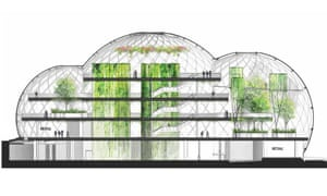 Wild working … Amazon employees will work in a jungle landscape of mature trees and green walls.