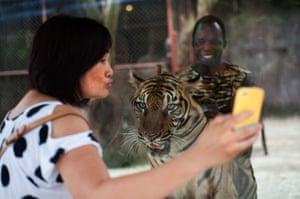 Chinese tourists: Taking aselfie at Sriracha zoo in Pattaya